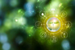 La importancia del sistema de gestión ambiental