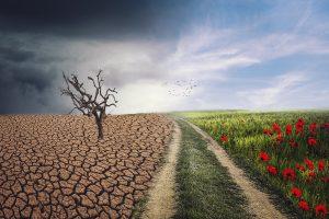 Claves para entender la Ley de Cambio Climático